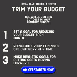 Trim Your Budget